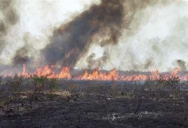 El fuego ya consumió más de 3 millones de hectáreas en Santa Cruz. Foto Archivo