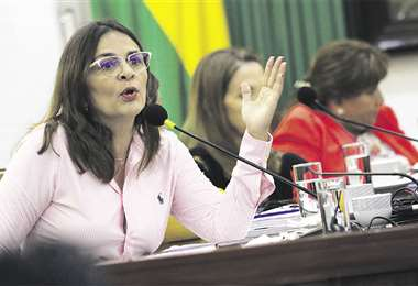 La concejala Rosario Schamisseddine fue enviada a la comisión de Ética por una queja que presentó su suplente, Rubén Darío Suárez