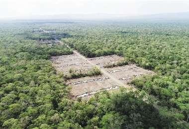 La imagen muestra cómo dejaron los colonos la reserva forestal El Paquió en Roboré