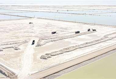 La producción de litio es lo que enfrenta al Gobierno con los cívicos potosinistas, más cercanos a Mesa