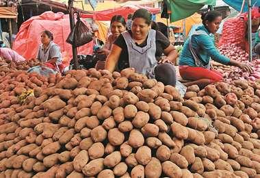 La papa harinosa tuvo un incremento de Bs 20. Vendedores dicen por la poca oferta (Foto: Jorge Gutiérrez)