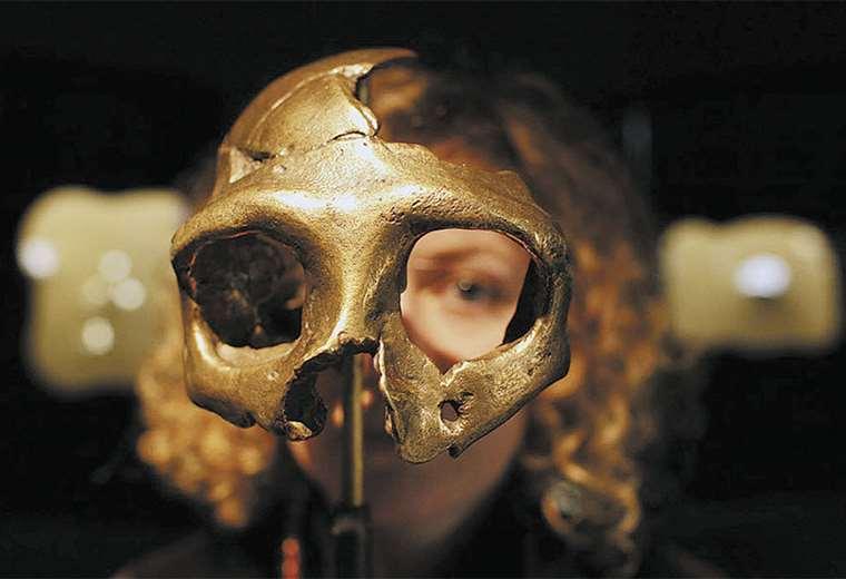 Los denisovanos dejaron huellas en el Sudeste Asiático, Filipinas e Indonesia. Homo sapiens los desplazó