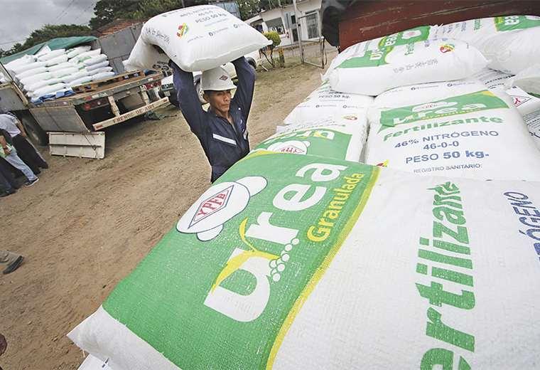 Positivo. La urea nacional está reemplazando al fertilizante importado. Foto: HERNÁN VIRGO