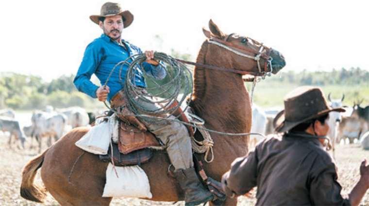 Actores, humanos y animales, debieron interactuar meses antes de iniciar el rodaje. Foto: ABUBUYA PRODUCCIONES