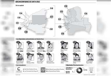 El Movimiento Al Socialismo tiene 15 curules; Comunidad Ciudadana, 12; Bolivia Dice No, cuatro; y Partido Demócrata Cristiano, uno. Se aguarda el cómputo oficial