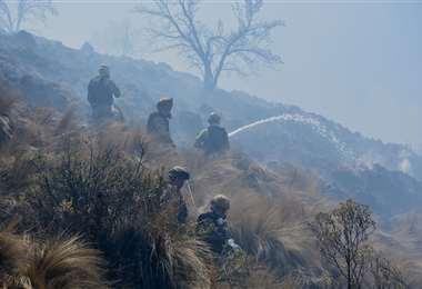 Los incendios afectan esta área protegida desde septiembre (Foto: ABI)