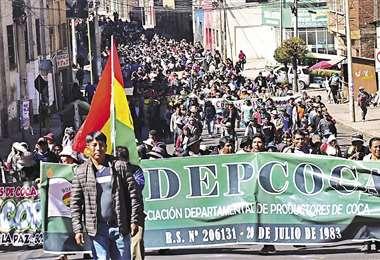 Los cocaleros de Adepcoca están enfrentados con el Gobierno; la oposición busca capitalizar el descontento. Foto: APG NOTICIAS