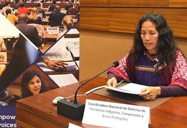 Ruth Alípaz, indígena uchupiamonas, este martes en la ONU