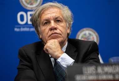 El representante del organismo internacional I Foto: archivo.