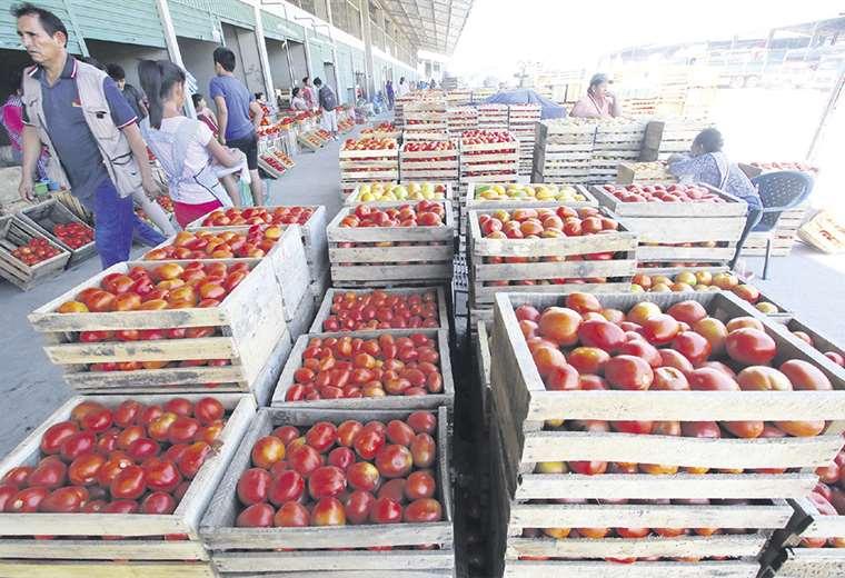 Tras el desbloqueo de la ruta a los valles (Santa Cruz) aumentó la oferta de hortalizas en el nuevo Abasto. Se vende tomate desde Bs 1,50 el kilo. Foto: Jorge Uechi