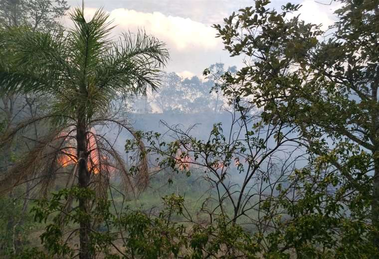 Incendio en localidades de Porongo
