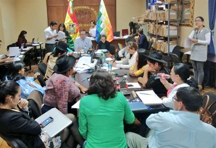 La Comisión Legislativa en pleno trabajo (Foto: Senado)