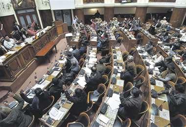 La mayoría masista de la Cámara de Diputados se impuso y sancionó la Ley de Garantías Constitucionales. Habrá pulseada con el Ejecutivo. Foto: APG Noticias