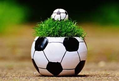 El fútbol alemán se suma el cuidado de la naturaleza. Foto. Internet
