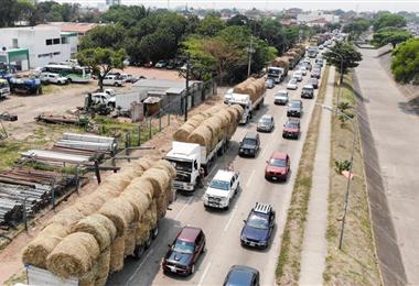 Al menos 15 tráiler y cinco camiones partieron con forraje para el Chaco cruceño