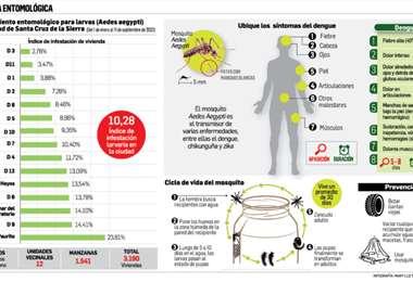 Infografía: Mary Luz Soruco Aponte