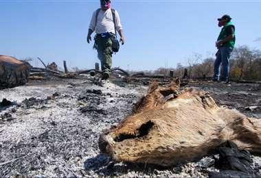 El fuego arrasa todo a su paso. Foto referencial: Ipa Ibañez