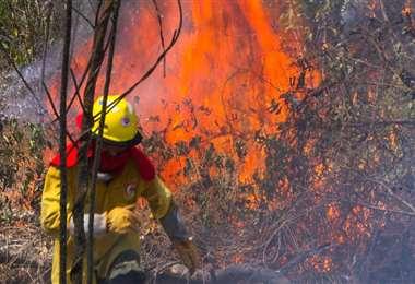 El fuego ya consumió más de 1 millón de hectáreas. Foto referencial: Ipa Ibañez
