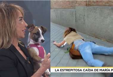 La periodista estaba grabando un reportaje junto a su perro