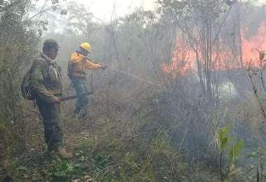 Bomberos en pleno trabajo de extinción / Foto: EL DEBER
