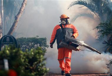 El Sedes realiza campaña de fumigación. Foto. Internet