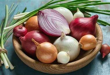 Existen varios tipos de cebollas, todas son nutritivas y tienen cualidades medicinales
