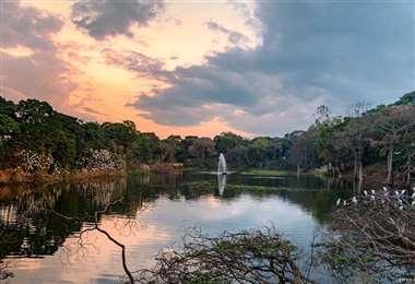 Laguna del Jardín Botánico al atardecer. Foto: Guillermo Córdova