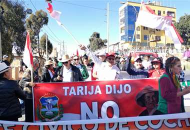 Cívicos de Tarija