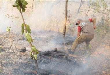 Hay 47 incendios activos en 19 municipios cruceños