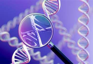 Dos mujeres obtienen el nobel de química por 'la tijera molecular'