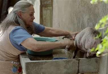 La película mexicana 'Cría puercos' abre el Fenavid 2020. Fue nominada a los premios Ariel
