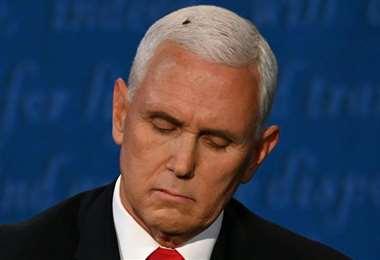 La mosca en la cabeza de Pence. Foto AFP