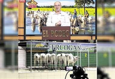 Foto: EL RODEO / FERCOGAN
