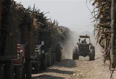 La ley plantea desconcentrar temas ligados al desarrollo productivo, entre otros