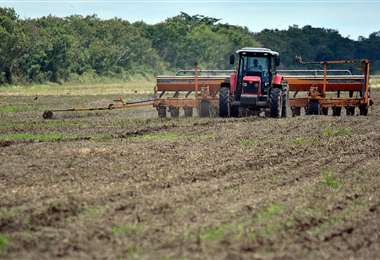 La falta de lluvia condicionó la siembra de cultivos de verano /Foto: Fuad Landívar