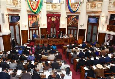 La sesión en la Cámara Baja I Diputados.
