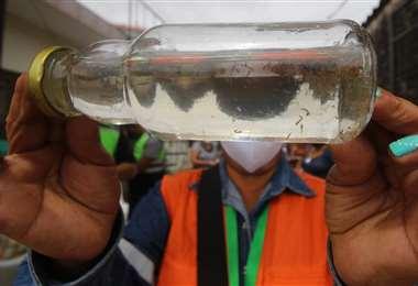 El índice de infestación larvaria en la ciudad es del 10,20% /Foto: Jorge Gutiérrez