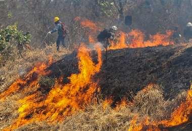 En lo que va de año se quemaron más de 2 millones de hectáreas. Foto referencial