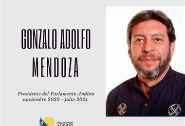 El boliviano Adolfo Mendoza asume la presidencia del Parlamento Andino/ABI