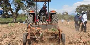 Los pequeños productores piden más participación en los créditos del BDP (Foto: EL DEBER)