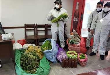 El Gobierno apuesta por los medicamentos naturales ante la pandemia.