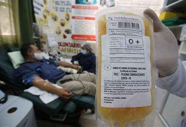 Las donaciones de sangre continúan en el país. Foto: Jorge Ibáñez