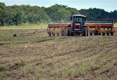 El déficit hídrico en los campos retrasó casi un mes la siembra de granos