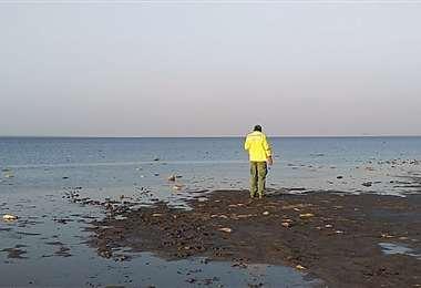 Laguna Concepción: colonias menonitas operan alrededor de este humedal