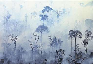 El fuego destruye la Amazonia/Foto: AFP
