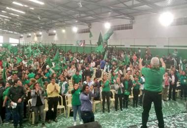 El partido verde anunció que presentará candidaturas para las subnacionales