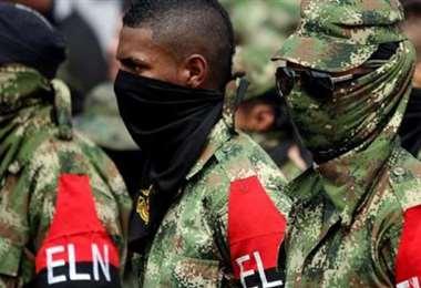 Guerrilla colombiana