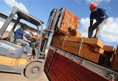 $us 30,7 millones fueron las exportaciones de Santa Cruz el año pasado, siendo el departamento líder en este sector. Foto: Hernán Virgo