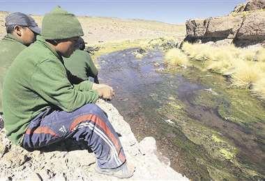 Para Bolivia, las aguas del Silala son un manantial canalizado por Chile. Para los mapochinos, es un río. Foto: Archivo