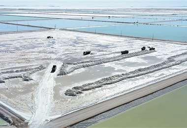En el salar de Uyuni se desarrolló un proyecto piloto para extracción de este mineral. Foto: AFP